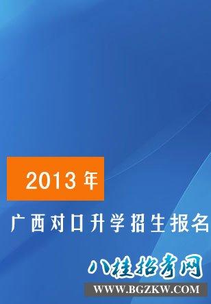 2013年广西高职高