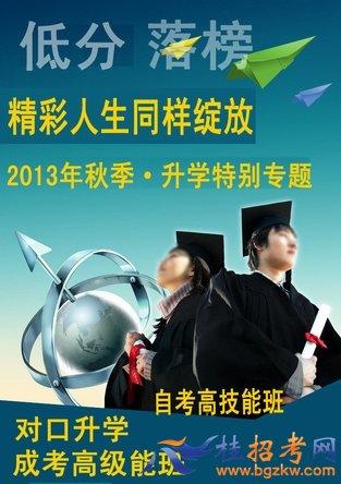 2013年高考升学成